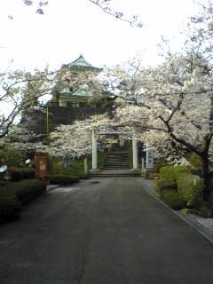 昨日夕方の涌谷城山公園入口の画像です。