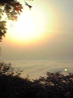 宮城県涌谷町箟岳山東側の画像です。