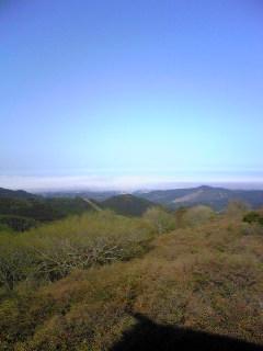 宮城県気仙沼市の徳仙丈山にある気仙沼市民の森から見た海の方の画像です。