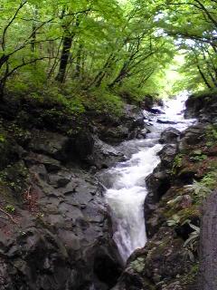 宮城県加美町小野田地区の荒沢の滝の上流の様子です。