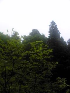 宮城県涌谷町箟岳山の上空の様子です。