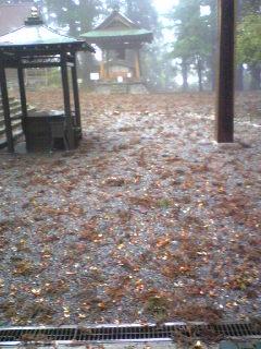 今日の暴風でこんなになっちゃった箟峯寺境内です。