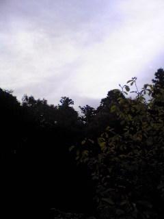 今朝の宮城県涌谷町箟岳山上空の様子です。