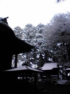 すっかり雪景色の箟峯寺境内です。