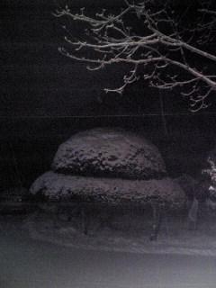 宮城県涌谷町箟岳山は雪が降り積もっています