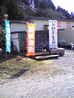 今日オープンした山野草直売所です。