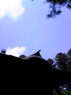 6月9日午後の箟峯寺上空です。